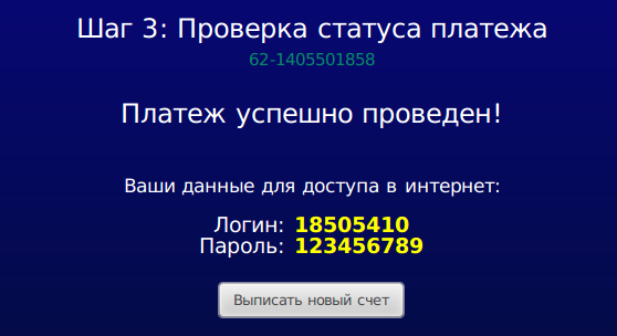 Сообщение об успешном платеже + данные для доступа в интернет